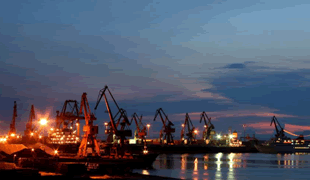 How to check the port statistics of foreign trade companies