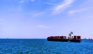 How does the foreign trade agency calculate the profit when buying out the export?