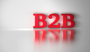 How to filter out B2B platforms in Google search?
